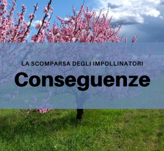 La scomparsa degli impollinatori: conseguenze.