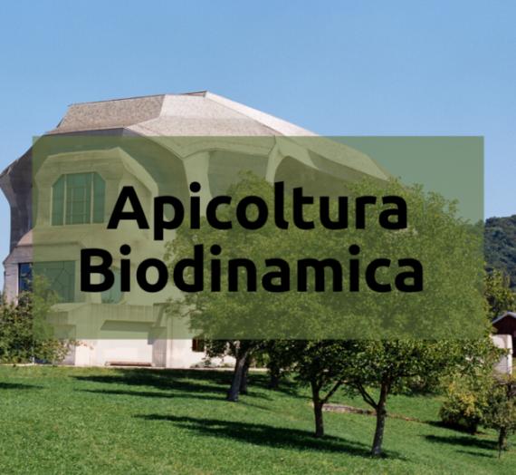 L'apicoltura biodinamica
