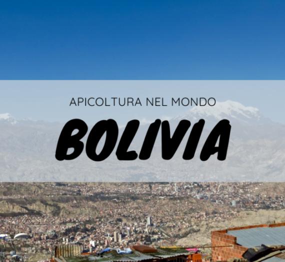 Coca e api in Bolivia