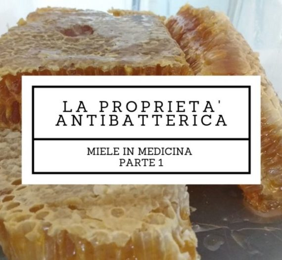 Miele in medicina: proprietà antibatterica
