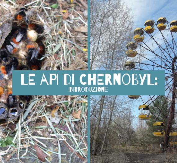 Le api di Chernobyl: Introduzione