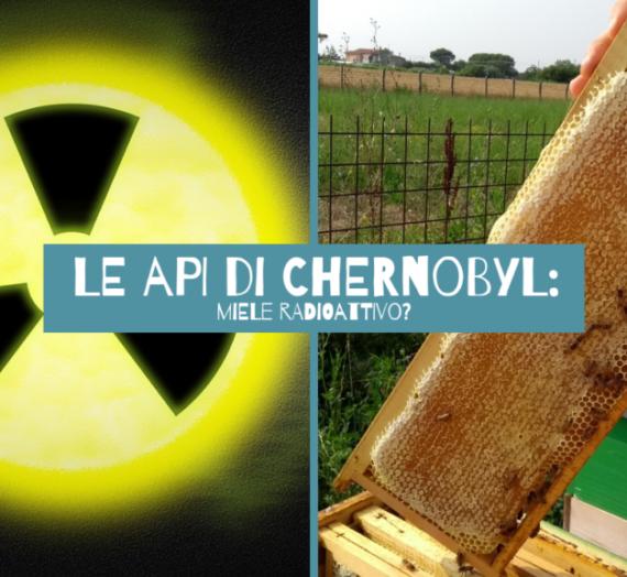 Le api di Chernobyl: Miele radioattivo?