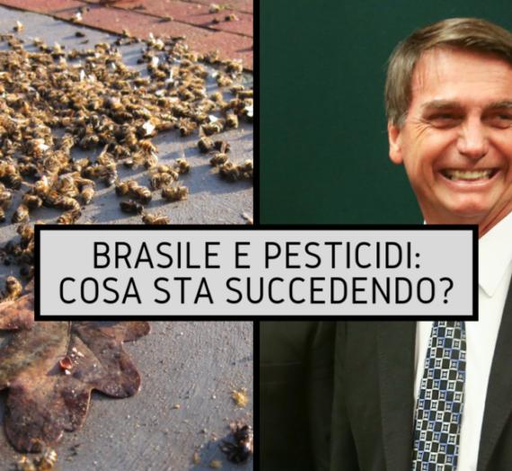 Brasile e pesticidi: Cosa sta succedendo?